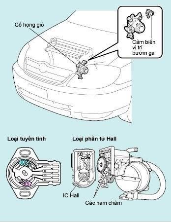Tìm Hiểu Và Phân Loại Cảm Biến Trên Ô Tô 5 Thanh Phong Auto HCM